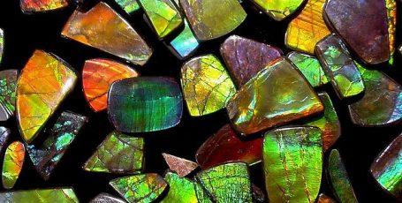 Аммолит — органический минерал